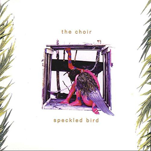 Speckled Bird by The Choir